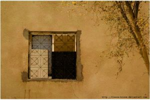 :: Sepia of a Window :: by freeze-bloom