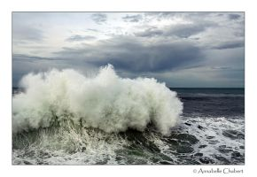 Houleux by Annabelle-Chabert