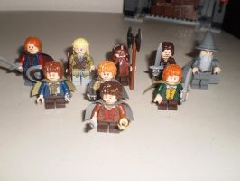 The Lego Fellowship of the Ring by ZhaneAugustine