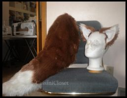 Wolf Tail and Ears by CassiniCloset
