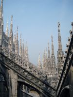 Milan04 by ForestGirlStock