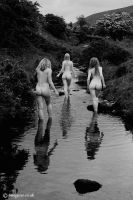 bathers in the brook by imagesse