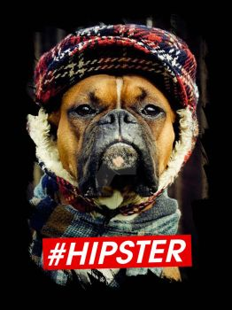 Hipster by masterplan080510