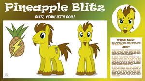 MLP OC Bio Sheet : Pineapple Blitz by outlaw4rc