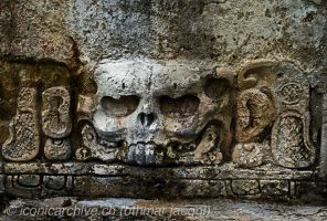 Maya skull by iconicarchive