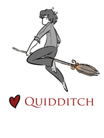 Love Quidditch by Avender