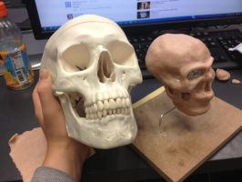 Clay Skull WIP by l156a21