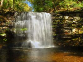 Ricketts Glen State Park 51 by Dracoart-Stock