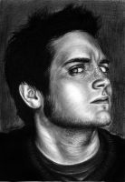 Elijah Wood IV. by MsRainmaker