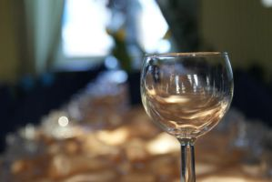 wine glass by snake6630