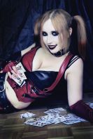 Card game with Harley by Stephanie-van-Rijn