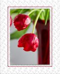 Red Tulips by SalonOfArt