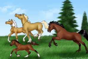 You will race every Horse by abosz007