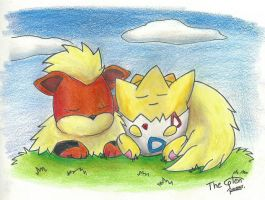 Growlithe and Togepi request by Randomous