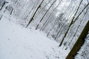 Snowscape Stock 71 by Sed-rah-Stock
