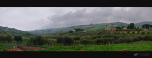 Winter on Sicily by ChudnayaMamba