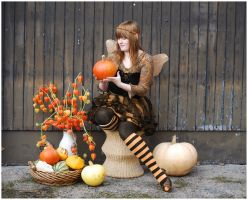 Time Of Pumpkins by Eirian-stock