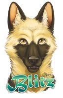 Blitz Badge Commission by GoldenDruid