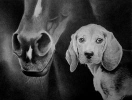 A Fine Pair of Sniffers by joniwagnerart