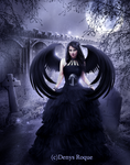 Corvus Queen by DenysRoqueDesign