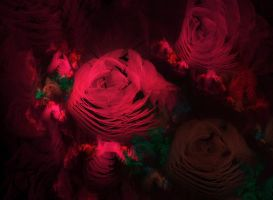 where the wild roses grow by lindelokse