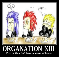 Organization XIII by sorariku09x