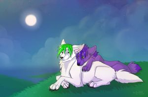 Under the moon by HaSKA-LoWo