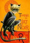 Miraculous Chat Noir by neko-rulz