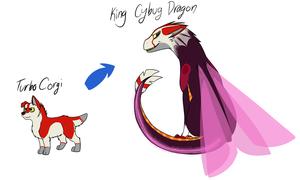 Form Chart - Corgi!Turbo, Dragon!KingCybug by XeekyXeek