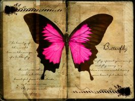 Butterfly Wallpaper by MisSToTi