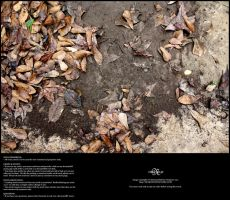 Dry Mud and Leaves 01 by Neyjour