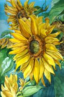 flowers of sun by DariaGALLERY