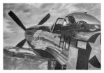 P-51 Mustang by Mikes-stuff
