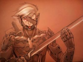 Raiden - Metal Gear Rising Revengance by slifertheskydragon