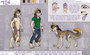 Tes Reference Sheet by Tsebresos