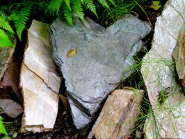 Natural Heart of Stone by Momofbjl