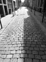 Cobbled Together by LauraHolArt