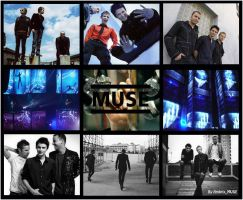 - Muse Wallpaper by AmbrixMUSE
