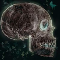 Skull Candy by selenatopham