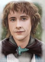 LOTR: Pippin by Bunnairry