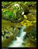 trickle down 0.1 by DL-Photography