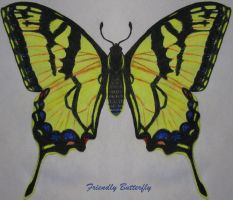 Swallowtail Butterfly by FriendlyButterfly