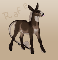 OLD REF - Rafe | Colt | Point Splinter Sidekick by TigressDesign