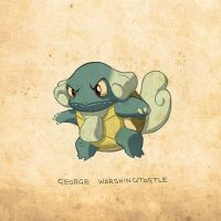 Warshingtortle by brandondayton
