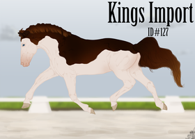 Kings Import 127 by Lone-Onyx-Stardust