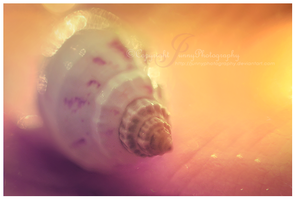 Candy shell by JunnyPhotography