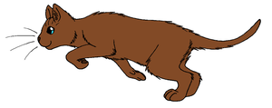 ThunderClan - Briarlight by WildpathOfShadowClan