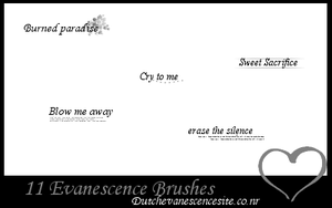Evanescence Brushes 1 by dutchevanescencesite