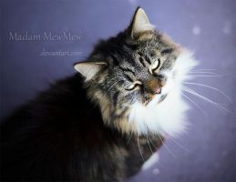 Seduce by MadamMewMew