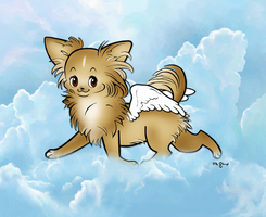Chihuahua angel on the move by msmickimac